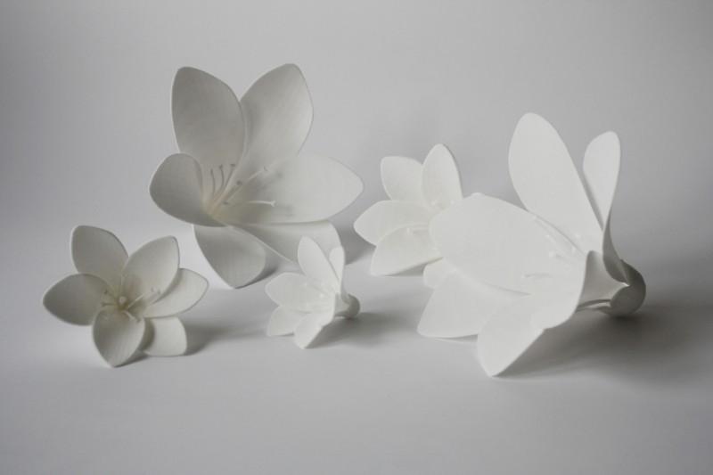 décoration fleurs vitrine